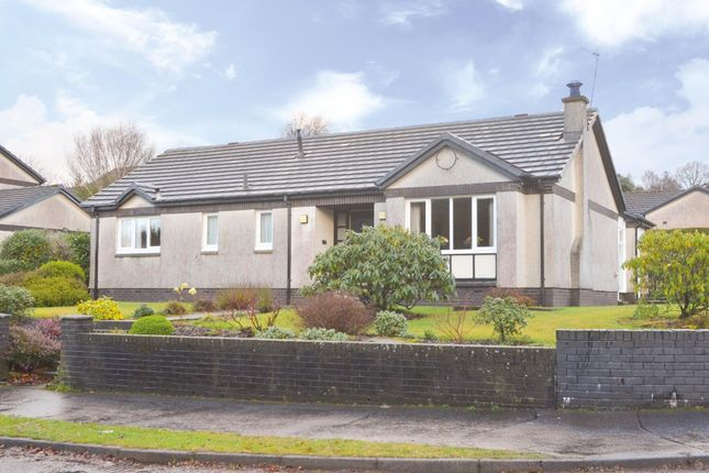 Thumbnail Bungalow for sale in Kennedy Drive, Helensburgh, Argyll & Bute