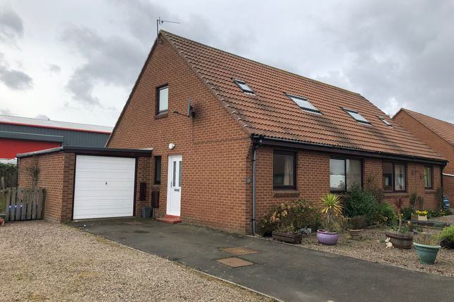 Thumbnail Semi-detached house to rent in Meadowburn, Amble, Northumberland