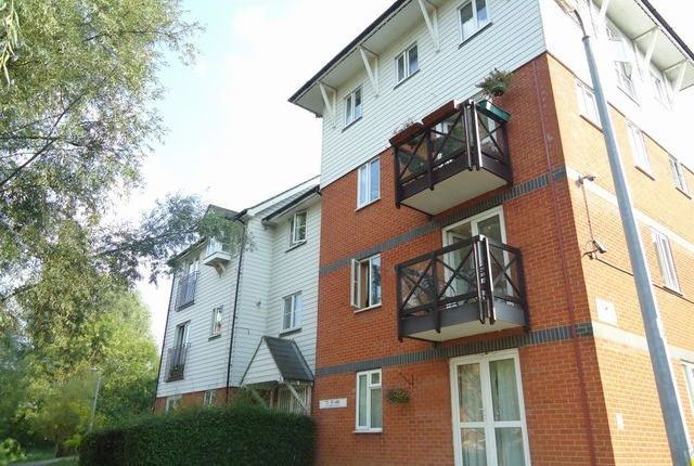 Thumbnail Flat to rent in Sheepen Place, Colchester, Essex