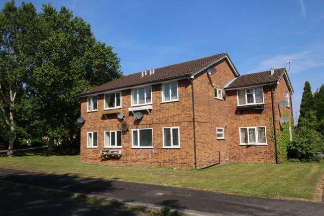 Studio to rent in Brackenwood Mews, Wilmslow SK9