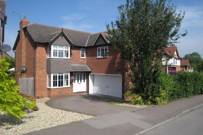 Thumbnail Detached house to rent in Speedwell Drive, Broughton Astley, Leicester