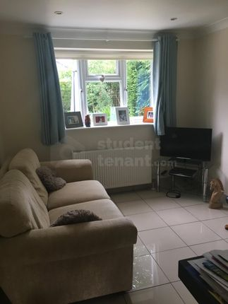 Thumbnail Room to rent in Main Road, Bucks Horn Oak, Farnham, Hampshire