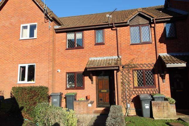 Thumbnail Terraced house to rent in Damask Gardens, Waterlooville