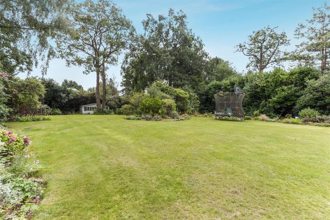 Rear Garden of The Warren, Kingswood, Tadworth KT20