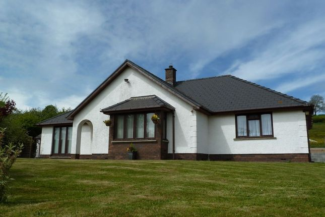 Thumbnail Detached bungalow for sale in Awel Teifi, Llechryd, Cardigan, Ceredigion
