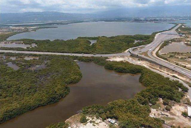 Thumbnail Land for sale in Bridgeport, Saint Catherine, Jamaica