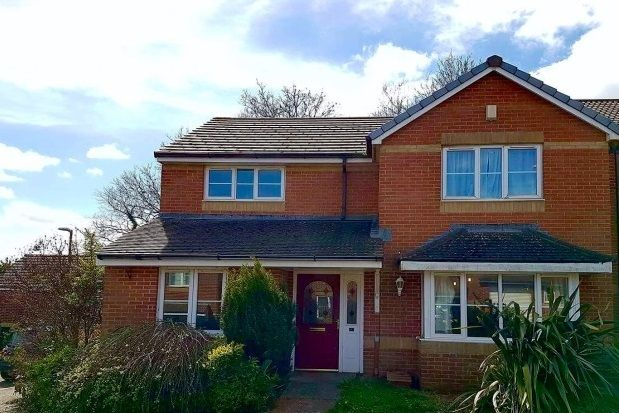 Thumbnail Property to rent in Lutyens Drive, Paignton