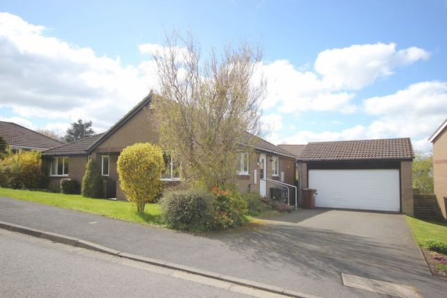 Detached bungalow for sale in Dickson Drive, Hexham