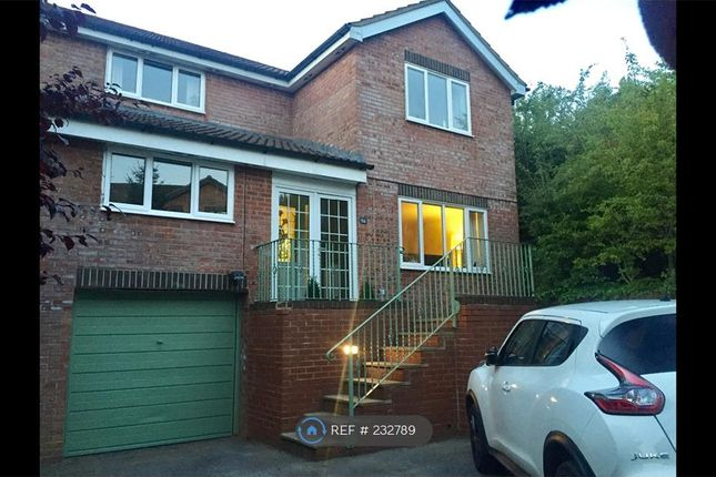 Thumbnail Detached house to rent in Whitbred Road, Salisbury