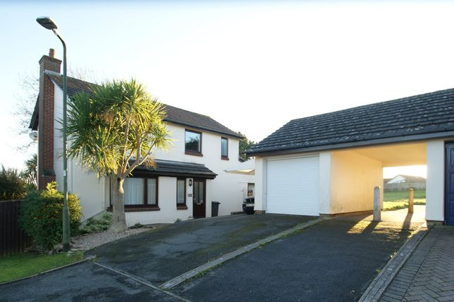 Thumbnail Detached house for sale in Freshwater Drive, Paignton