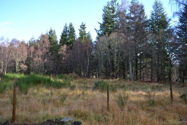 Thumbnail Land for sale in Carron Sawmill, Aberlour