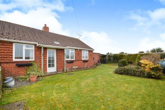 Thumbnail Semi-detached bungalow for sale in East Woodyates, Salisbury