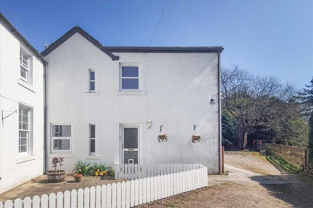 Thumbnail Semi-detached house for sale in Campbell Street, Dollar
