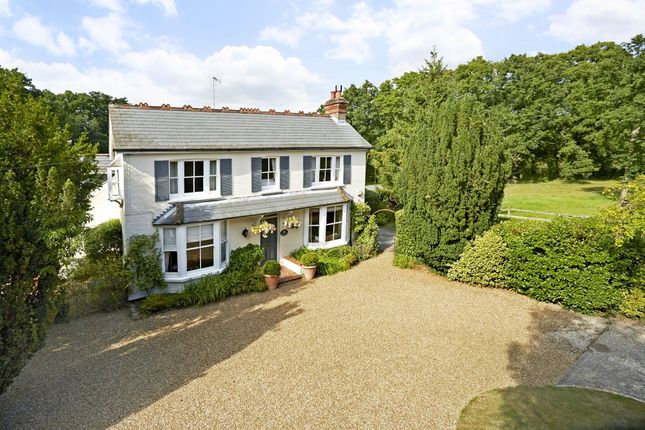 Thumbnail Detached house to rent in Five Oaks Road, Slinfold, Horsham