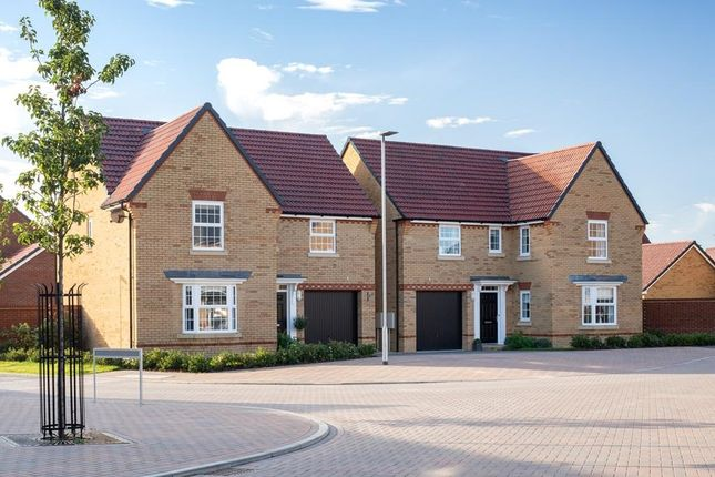 """Thumbnail Detached house for sale in """"Exeter"""" at Southern Cross, Wixams, Bedford"""