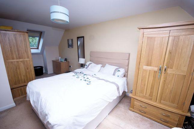 Room To Rent Stubbington