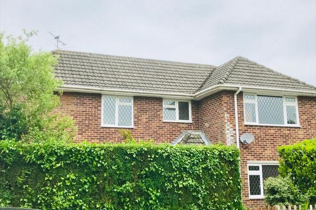 Thumbnail Detached house to rent in Northfield Road, Ringwood