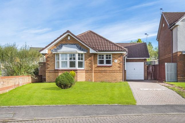 Thumbnail Detached bungalow for sale in 17 Oak Wynd, Cambuslang, Glasgow