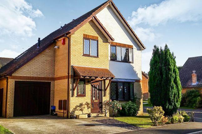 Thumbnail Detached house for sale in Alder Close, Sandford, Wareham