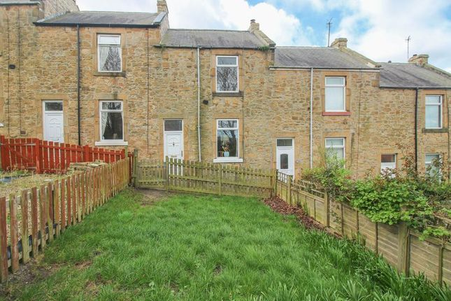 Thumbnail Terraced house for sale in Frances Street, Blaydon-On-Tyne