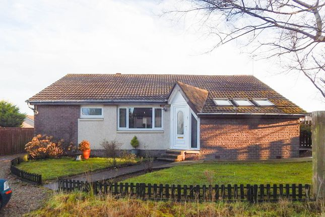 Thumbnail Detached bungalow for sale in Clashrodney Avenue Cove Bay, Aberdeen