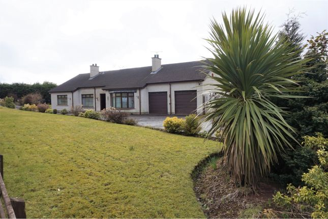 Thumbnail Detached bungalow for sale in Steeple Road, Antrim