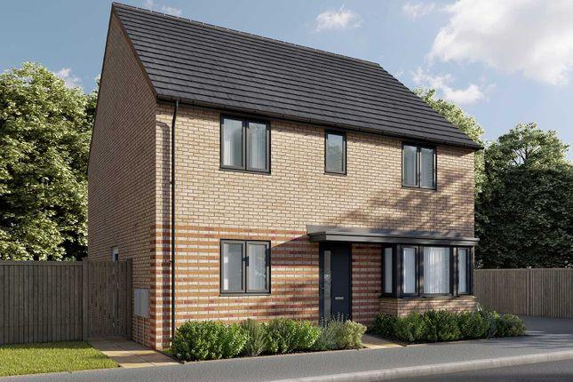 """Thumbnail Detached house for sale in """"The Pembroke"""" at Parsonage Close, Highfields Caldecote, Cambridge"""