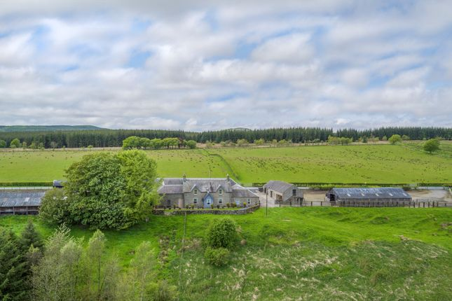 Thumbnail Farm for sale in Demainholm & Under Burnmouth, Newcastleton
