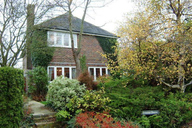Thumbnail Detached house to rent in North Bersted Street, Bognor Regis