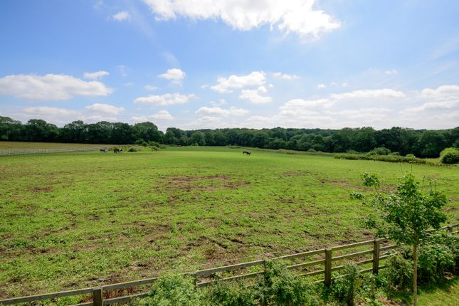 Thumbnail Land for sale in Hensting Lane, Eastleigh