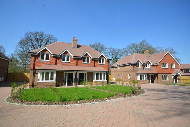 Thumbnail Semi-detached house for sale in Guildford Road, Bagshot, Surrey
