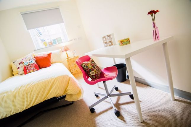 Thumbnail Property to rent in Norfolk Park Road, Sheffield