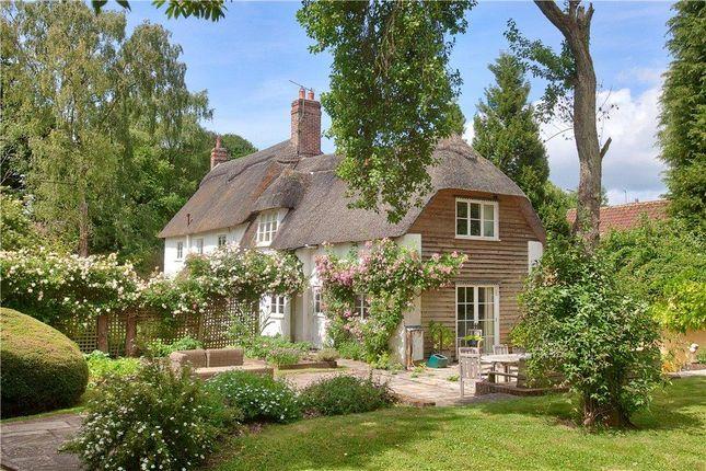 Thumbnail Detached house for sale in Thatch, Farnham, Blandford Forum