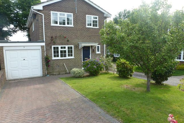 Thumbnail Property to rent in Drummond Close, Haywards Heath