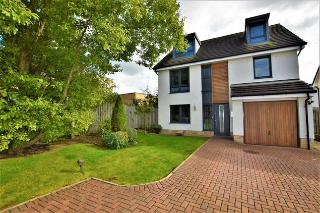 Thumbnail Detached house for sale in Cypress Road, Motherwell