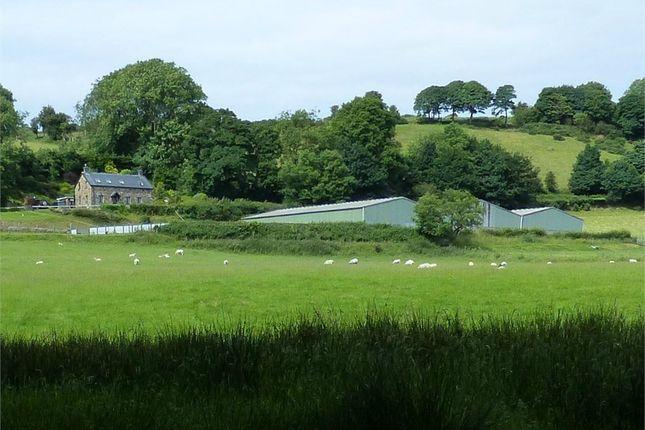 Thumbnail Farm for sale in Rhydlewis, Llandysul