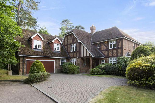 Thumbnail Detached house to rent in Wellington Place, Sandy Lane