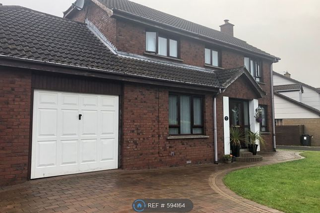 Thumbnail Detached house to rent in Dalewood, County Antrim, Northern Ireland