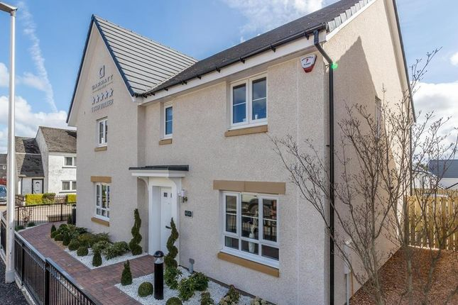 "Thumbnail Semi-detached house for sale in ""Traquair"" at Abbey Road, Elderslie, Johnstone"