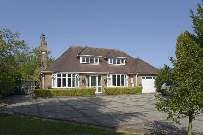 Thumbnail Bungalow for sale in Derby Road, Beeston