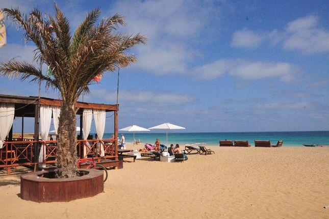 Angulo's Bar On Beach