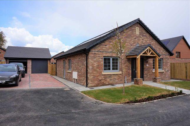 Detached bungalow for sale in Llys Tirnant, Fforestfach, Tycroes, Ammanford
