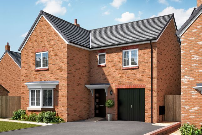 "Thumbnail Detached house for sale in ""The Grainger"" at Hartburn, Morpeth"