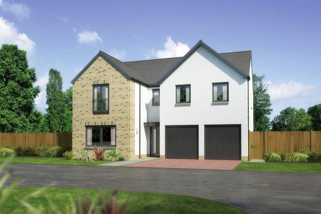 "Thumbnail Detached house for sale in ""Malborough"" at Whitehills Gardens, Cove, Aberdeen"