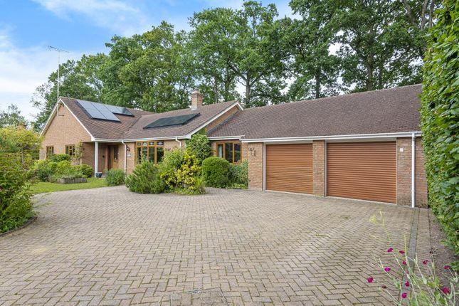 Thumbnail Detached bungalow for sale in Fleet, Hampshire