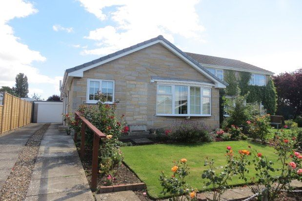 Thumbnail Detached bungalow to rent in Millfield Close, Pickering