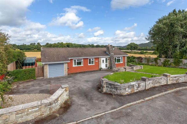 Thumbnail Detached bungalow for sale in Greystones, Walton, Nr Presteigne