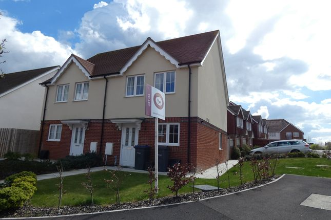 3 bed semi-detached house to rent in Holmes Road, Salisbury, Wiltshire SP1