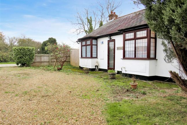 Thumbnail Property to rent in Dunmow Road, Rayne, Braintree