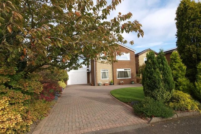 Thumbnail Detached house for sale in Ripley Drive, Cramlington